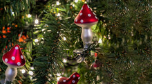 Glass Mushrooms - Amanita - Christmas Tree Toy On A Branch Of Green Spruce