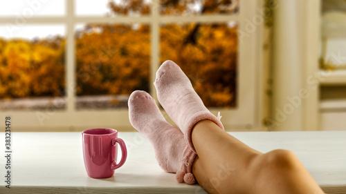 Woman legs and autumn window