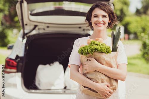 Portrait of positive brown hair girl enjoy ride drive car supermarket buy eco ec Canvas