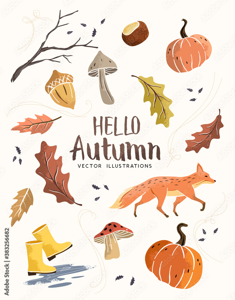 Fototapeta Autumn season composition hand crafted fall elements with leaves, mushrooms and pumpkins. vector illustration.