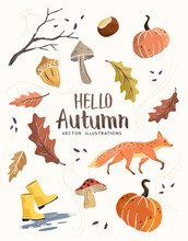 Autumn Season Composition Hand Crafted Fall Elements With Leaves, Mushrooms And Pumpkins. Vector Illustration.