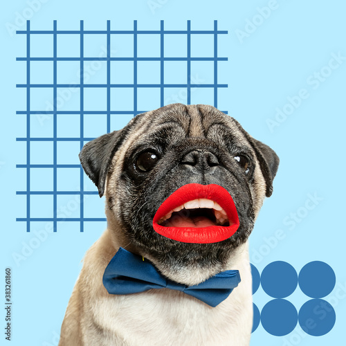 Kisses. Modern design. Contemporary art collage with cute dog and trendy colored background with geometric styled elements. Inspirative art, pets, animal, style and fashion concept. Copyspace.