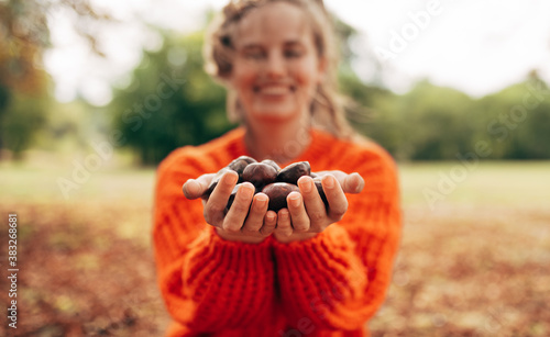 Obraz na plátně Image of smiling young woman picks chestnuts in park