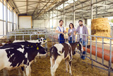 Group of happy farm workers standing in barn on livestock farm with healthy calves in foreground