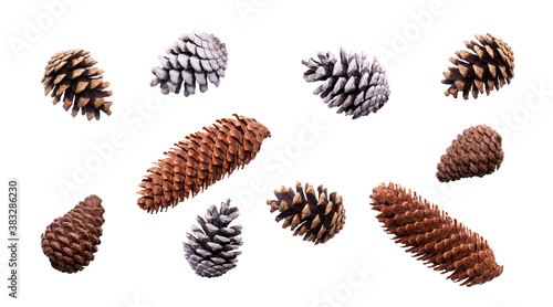 Fotografie, Obraz A collection of festive pine cone for Christmas tree decorations isolated against a white background