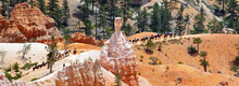 Bryce Canyon , Utah, USA: Group Of 16 Horseriders Riding Neatly In A Row Along Fascinating Red, White And Pink Rock Formations.