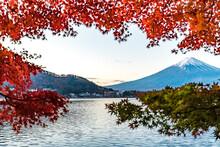 Colorful Autumn In Mount Fuji,...