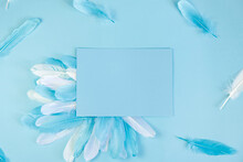 Blue Background With Feathers ...