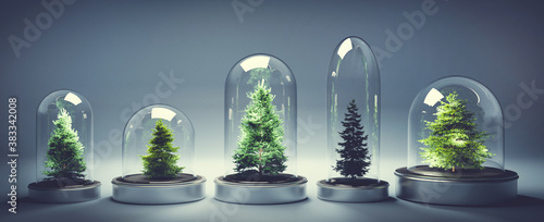Obraz Collection of Christmas trees in glass jars - fototapety do salonu