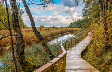 Wooden Walkway With Bridge In ...