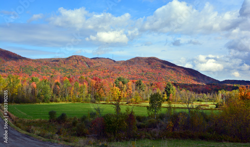 Canvas-taulu Fall landscape eastern townships Bromont Quebec province Canada