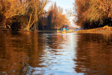 Kayaking In A Calm Winter Morn...