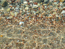 View Of Shallow Sea Water Through The Water. Stones, Sand And Shells Of Molluscs At The Bottom. Greece.