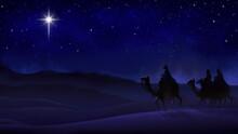 Christmas Night Scene With Rei...