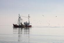 Fischkutter Auf Der Nordsee Be...