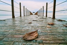 A Dry Leave Is On Wooden Board...