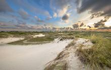 Dune Landscape On Schiermonnik...