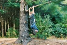 A Five Year Old Boy Swinging F...
