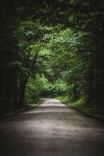 Dirt Road Through Lush Green F...