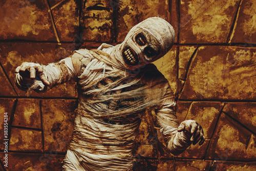 mummified resurrected man Wallpaper Mural