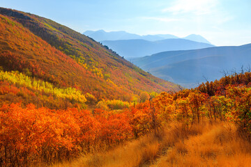 Panel Szklany Góry Fall colors landscape in the Wasatch Mountains, Utah, USA.