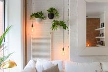 Interior Detail Of Hanging Pla...