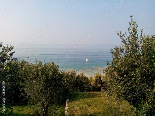 Fototapeta lake view from the olive grove