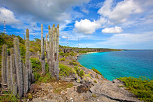 Bonaire Coastline