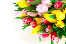 Spring Tulips On White Backgro...