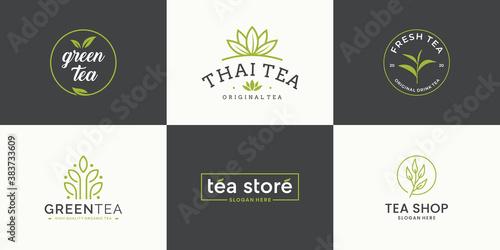 Photo Set collection tea leaf logo design template