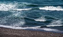 A Flock Of Seagulls Standing O...