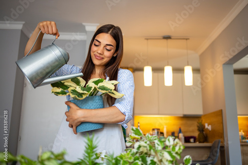 Obraz na plátně Smiling young Caucasian woman hold pot watering green plants in office or home, happy millennial female gardener or florist take care of domestic flowers, enrich cultivate ground, gardening concept
