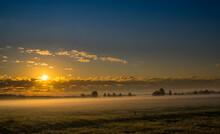 Poranna Mgła Na łące