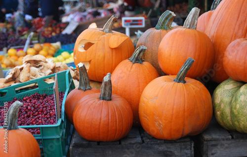 Fototapeta fresh pumpkin on market in autumn obraz