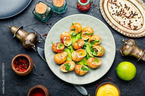 Fototapeta Delicacy stuffed snails