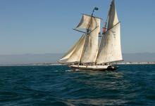 Tall Ship Under Full Sail