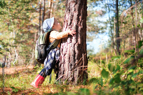 Fotografía Small kid in yellow sweater hugs a pine tree in autumn forest
