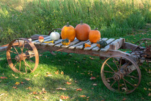 Antique Wooden Wagon With Pump...