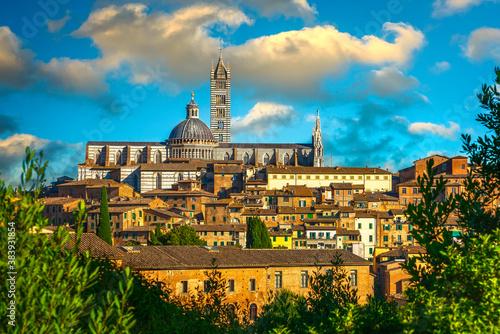 Naklejka premium Siena, Duomo cathedral skyline at sunset. Tuscany, Italy.