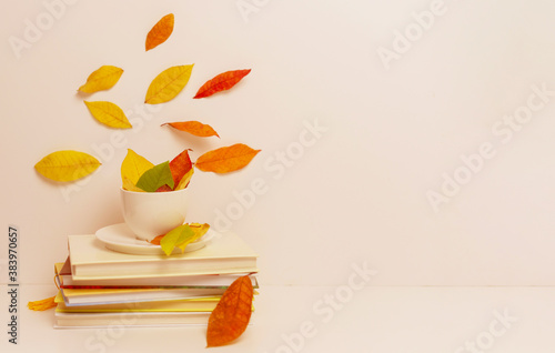 autumn leaves, a white Cup and a stack of books the concept of fall season Canvas Print