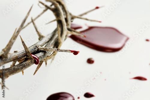 Vászonkép Drops of  Blood