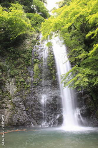 Fototapeta 箕面の滝 obraz na płótnie