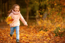 Happy Little Girl Of 4 Years Old With Blonde Hair Runs Through Yellow Fallen Leaves In An Autumn Park, On A Sunny Day. The Child Laughs And Holds A Bouquet Of Colorful Maple Leaves.