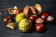Fresh Chestnuts On A Wooden Ta...