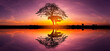 Panorama silhouette tree in africa with sunset.Tree silhouetted against a setting sun reflection on water.Typical african sunset with acacia trees in Masai Mara, Kenya.