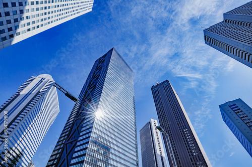 Fototapeta 新宿の高層ビル群と青空