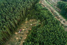An Aerial Of A Forwarder Collecting Freshly Cut Timber Logs On A Clear Cut Area In Rural Estonia, Northern Europe.