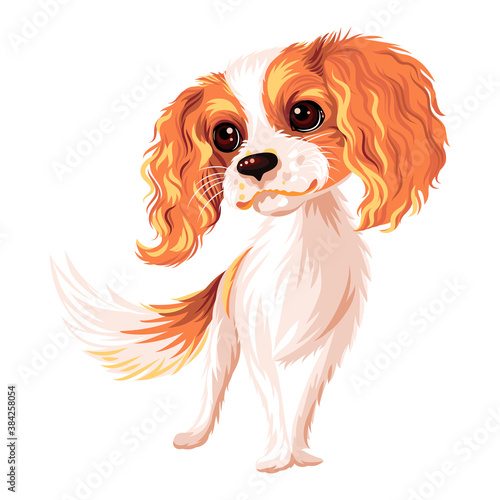 Fotografering Vector cute smiling dog Cavalier King Charles Spaniel breed