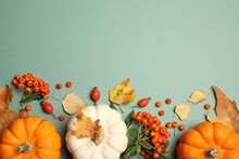Different Ripe Pumpkins, Autumn Leaves And Berries On Green Background, Flat Lay. Space For Text