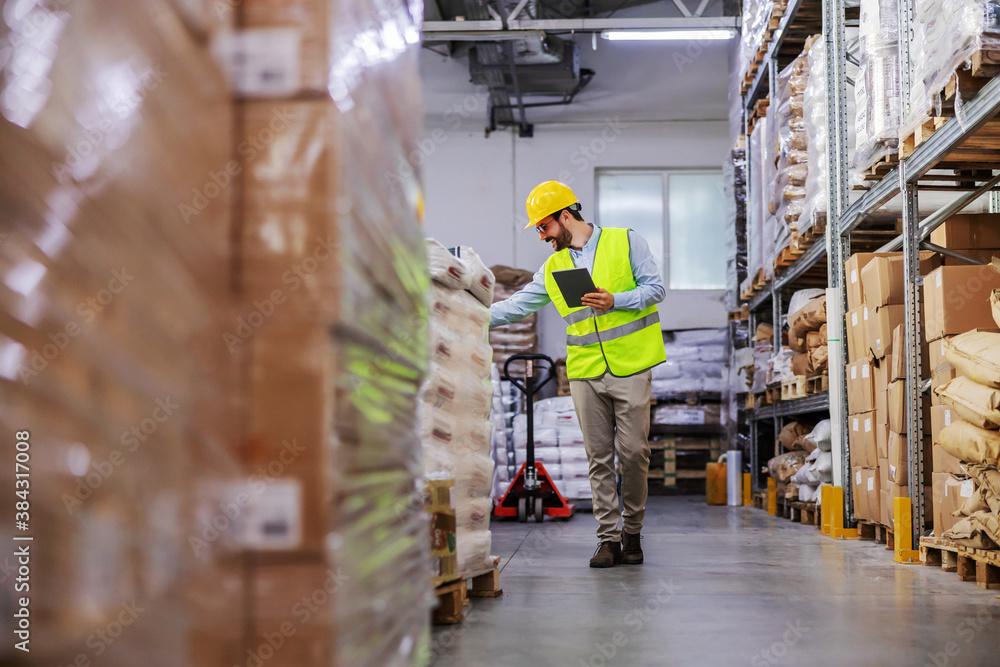 Fototapeta Full length of attractive bearded supervisor walking around warehouse and using tablet to check on goods for shipment.
